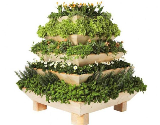 Plantas em pirâmide Crédito: Correio Braziliense