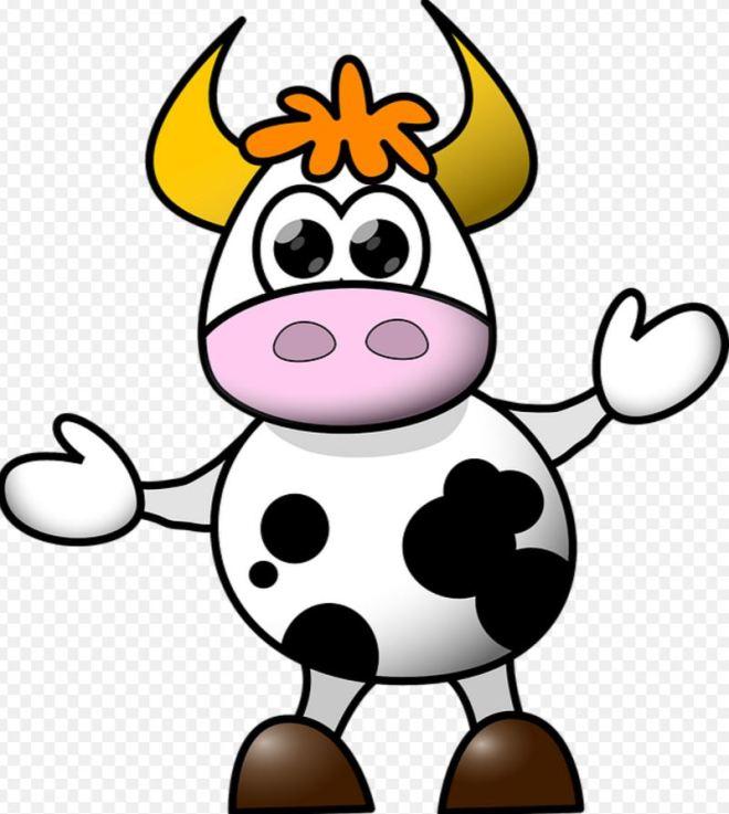vache-4